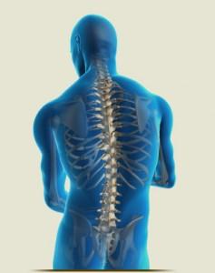 posture2-237x300